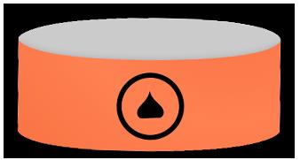 HPGO wristband
