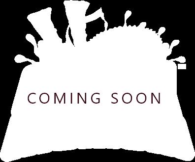 coaster logo illustration